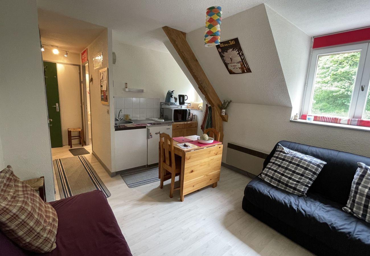 Studio à Le Lioran - Alagnon Gare 305